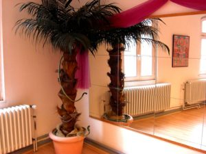 Tanzstudio Palme